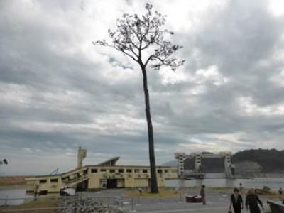 かつて日本百景にも数えられ、現在は東日本大震災の影響で「奇跡の一本松」となった高田松原への観光も出来ます。
