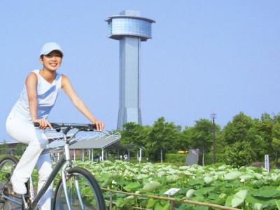 レンタル自転車があるので便利です。いろいろまわってみよう。